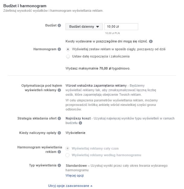 budżet i harmonogram reklam kampanii facebook ads