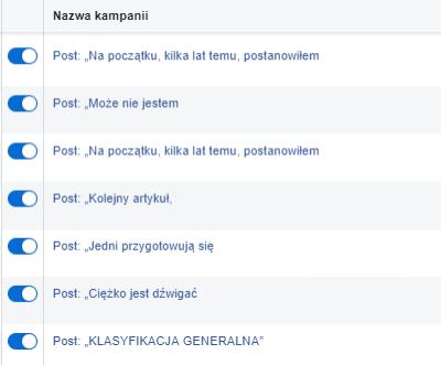 Porządek w nazwach kampanii facebook ads